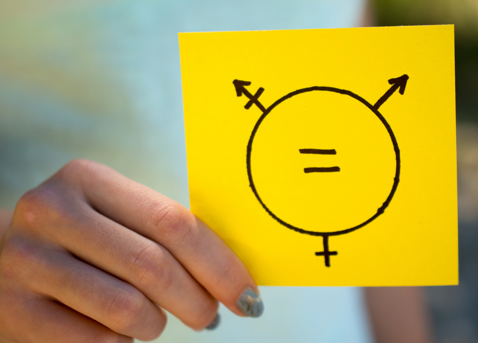 Enabling Gender Mainstreaming Through Policy and Programming